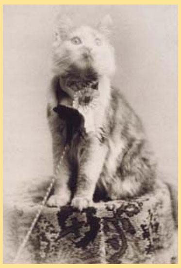 Выставка мейн кун в 1861