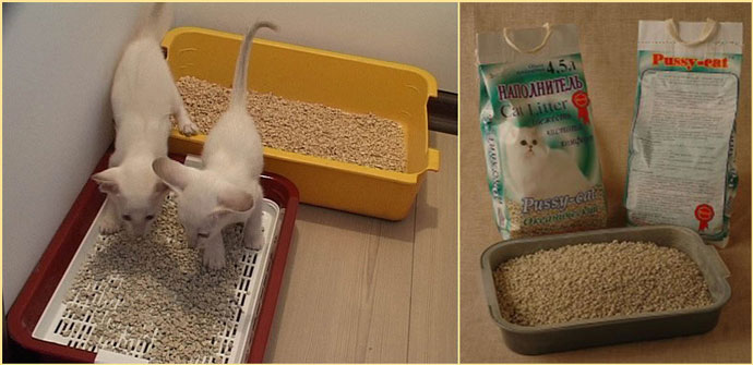 Кошачие лотки и наполнители для туалета