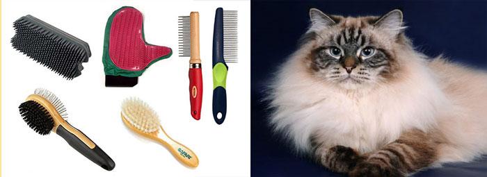Расчески, щетки, и кошка невская маскарадная