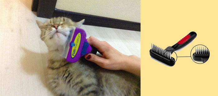 Вычесивание кошки и внешность фурминатора