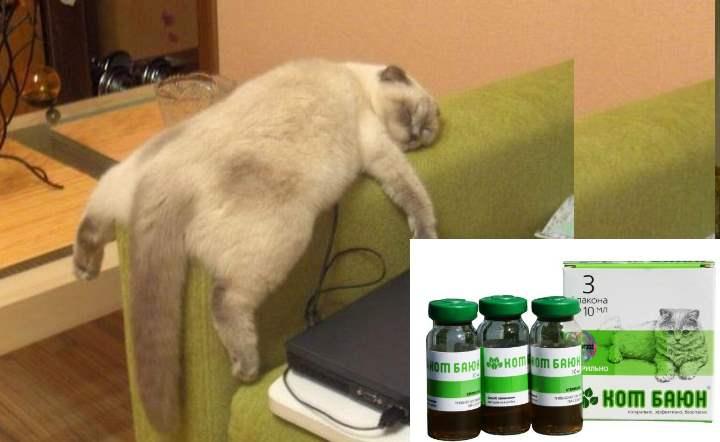 Стоимость капель кот Баюн: от 103 до 160 рублей, таблеток – 100-130р.