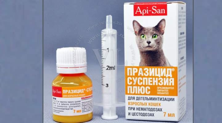 Нельзя смешивать таблетки «Празицида» с препаратами, в составе которых присутствуют пиперазин; а капли – с противопаразитными средствами.