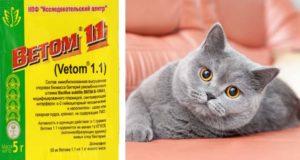Лечение кошек ветомом