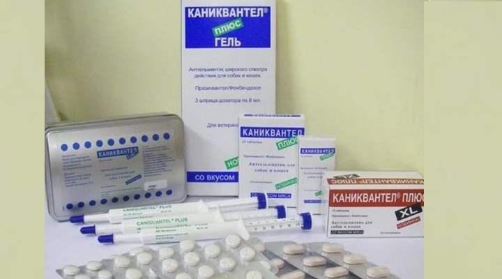 В состав «Каниквантела» входят такие активные вещества, как: фенбендазол, празиквантел