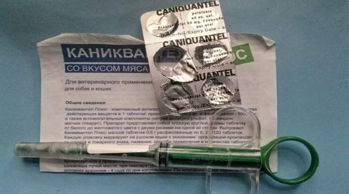 Запрещено смешивать «Каниквантел Плюс» с лекарственными препаратами, которые содержат в своем составе пиперазин