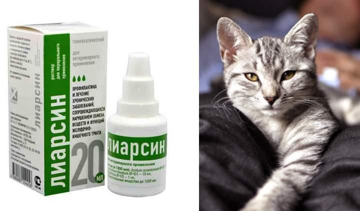 Лиарсин для кошек общие сведения применение дозировка
