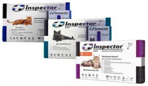 инфекционные, вирусные, прочие болезни, восстановительный период