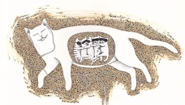 Котята в брюшке
