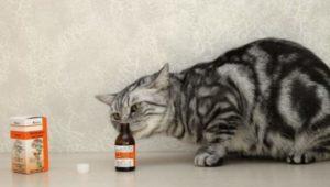 Кошка и трава валерьяны