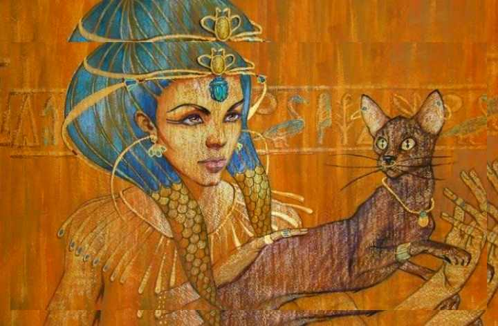 в древнем Египте знали о лысых изящных кошечках
