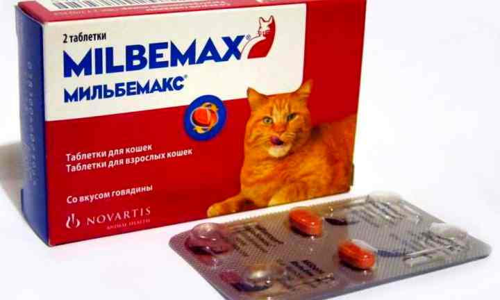 Дозировка празиквантела достигает 40 мг, мильбемицина 16 мг.