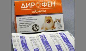 Дирофен применяется при заражение нематодами