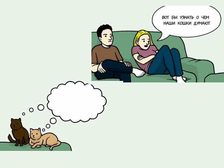 Как воспитывать кошку