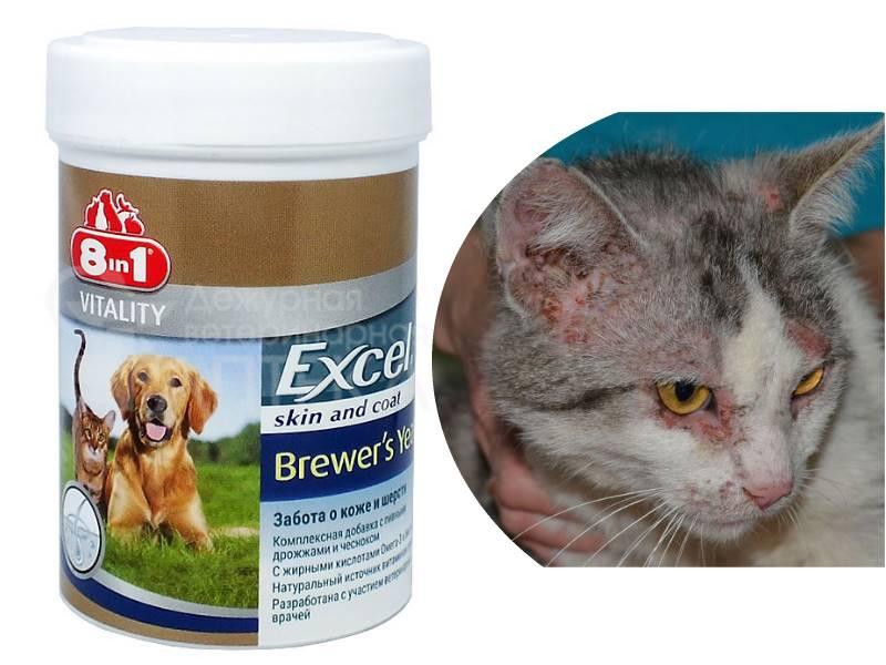 отвечает за зрение у кошек, контроль его потребления крайне важен